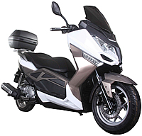 """ICE BEAR 150cc Exclusive Edition Scooter Moped PMZ150-T9 comes with bright LED lights, 13""""/14"""" Big Tires, Dual Disc Brakes, Dual Shocks, Big windshield. Free shipping to door, free lift-gate service, free helmet, free 1-year warranty."""